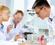 Что такое микоз кожи, способы лечения грибкового заболевания