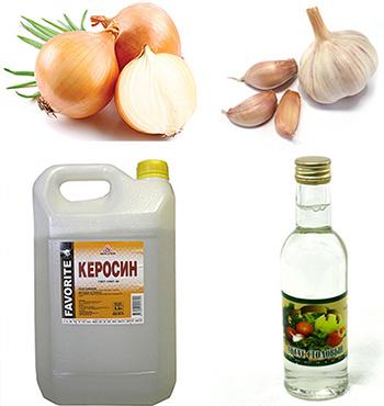 Керосин - действенное средство для уничтожения паразитов