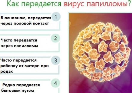 Папилломавирус и народные средства